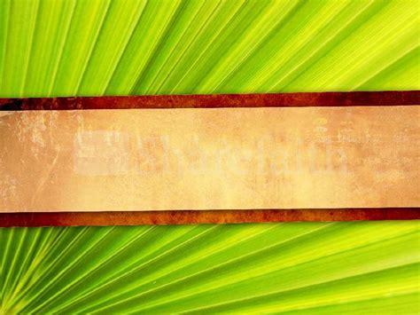 palm sunday wallpaper background wallpapersafari