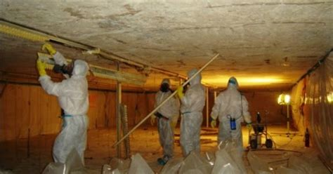 asbestos removal asbestos abatement services