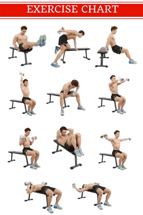 Bench Workout by Flat Dumbbell Bench Workout Bench Lazada