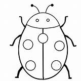 Coloring Insect Ladybug sketch template