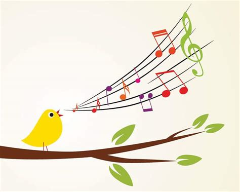 the bird s song learn from birds how to live in the now