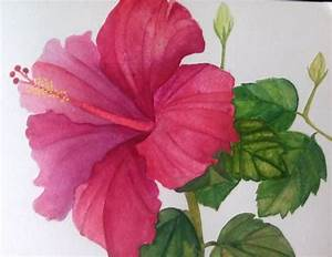 Pin by Ashuii on watercolor painting white background ...