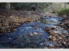Homepage The Escondido Creek Conservancy
