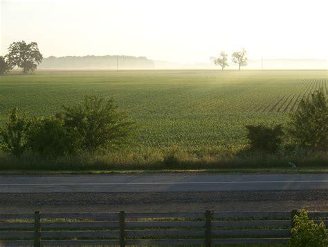ohio landscape year in pictures shasta s fog