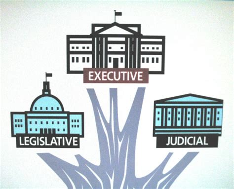 Branches Of Government Simplebookletcom