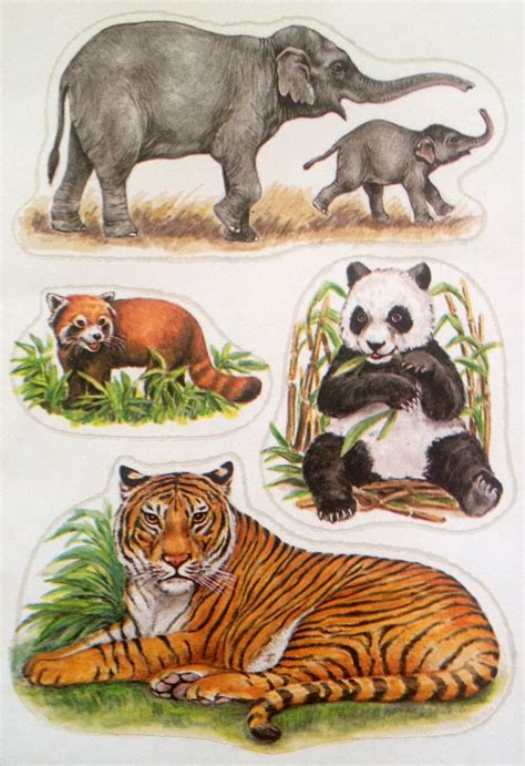 vintage german wild animal stickers zoo animals stickers