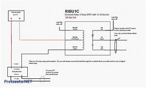 Rib2401b Wiring Diagram Sample