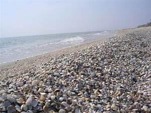Санатории с лечением псориаза на азовском море