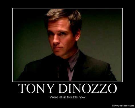 Tony Meme - tony dinozzo by loveedelric on deviantart