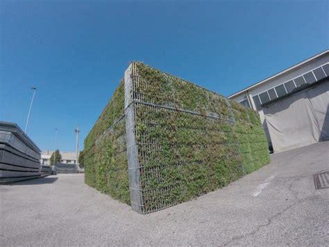 rete per gabbie gabbioni metallici rinverditi per recinzioni e verde