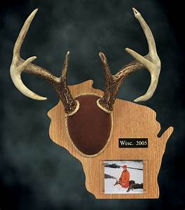 deer antler template search results calendar 2015 With antler plaque template