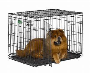 Midwest icrate pet crates crate double door 36 inch w for 36 inch dog crate with divider
