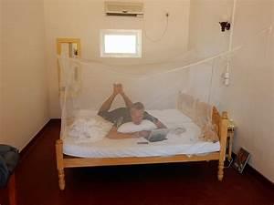 Welches Bett Ist Das Beste : das beste moskitonetz f r die reise anleitung zum anbringen am bett ~ Eleganceandgraceweddings.com Haus und Dekorationen