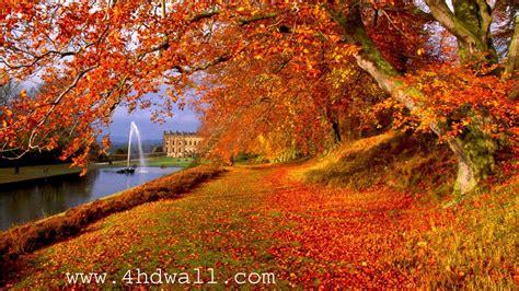 Desktop Autumn Wallpaper by Free Autumn Hd Wallpaper 1600x900 8334