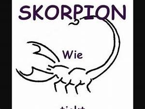 Skorpion Sternzeichen Frau : sternzeichen skorpion horoskop youtube ~ Frokenaadalensverden.com Haus und Dekorationen