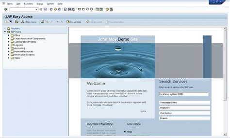 embed  html landing page   sap gui home screen
