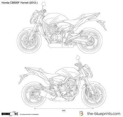 honda cbf hornet vector drawing
