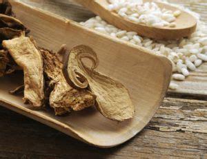 cuisiner des cepes cuisiner les cèpes séchés pratique fr