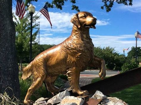 nj pays tribute   search  rescue dogs  bark