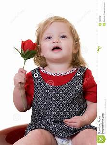 Baby with a rose stock photo. Image of white, toddler ...