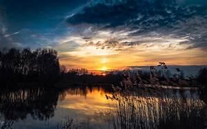 Sunset Lake Rushes Wallpaper