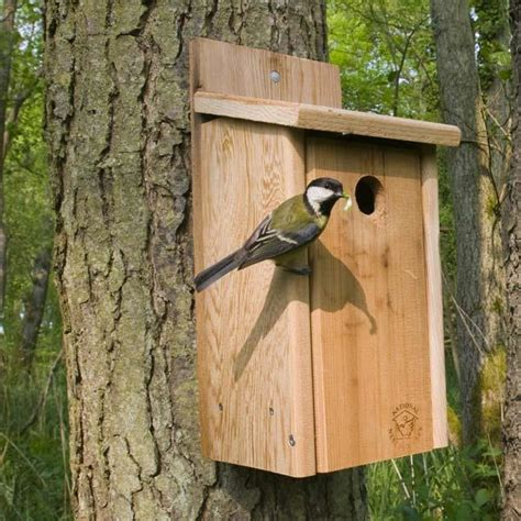 ark cedar plus hole nest box