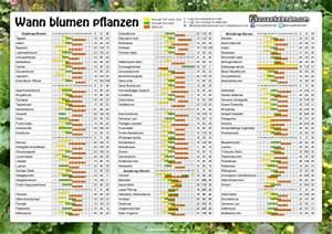 Wann Welches Gemüse Pflanzen Tabelle : blumen pflanzen ~ Frokenaadalensverden.com Haus und Dekorationen