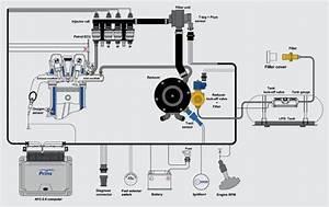 Lpg Wiring Diagram Pdf
