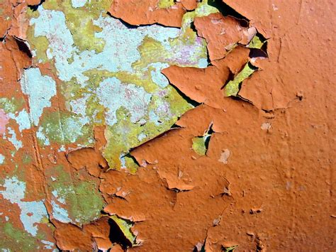 federal judge orders paint companies  pay  lead paint