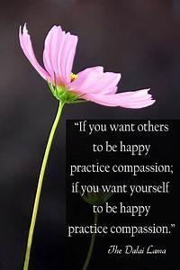 Quotes About Compassion Dalai Lama. QuotesGram