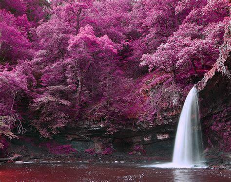 printed roller blind   waterfall   stunning purple