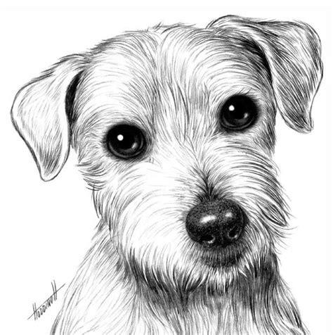 Hunde Vom Grundstück Fernhalten by Wie Den Hund Vom Bleistift F 252 R Die Anf 228 Nger Zu Zeichnen