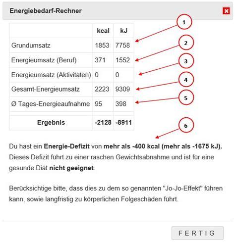 ist der energiebedarf rechner lebensmittelrechner