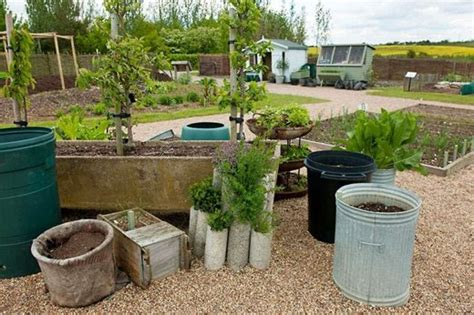 garden in pots beginners how to get the best from your container plants rhs gardening