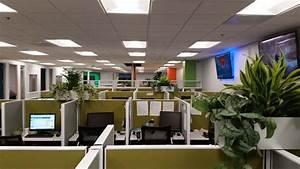 Call Center - Interior Plants - Santa Ana, CA - Plantopia ...