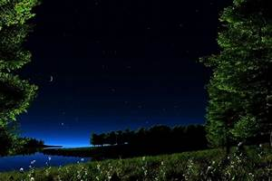 Night scenery - Fields & Nature Background Wallpapers on ...