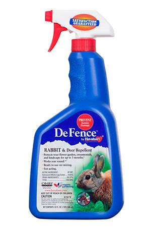 rabbit repellent deterrent guide effective tips to keep destructive rabbits away