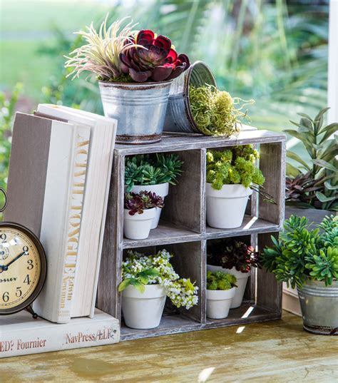 Window Sill Plant Holder by Bloom Room Wood Window Sill Plant Holder Joann Jo