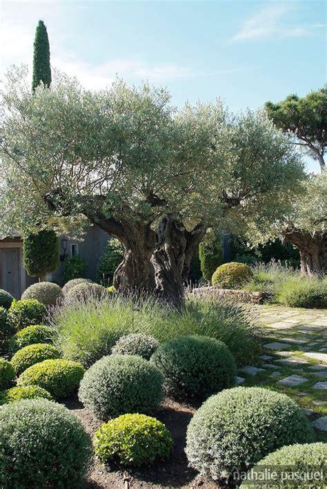 jardin mediterraneen paysagiste fanny chaboud jean