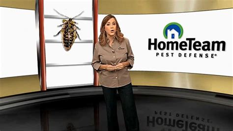 Quality Pest Control With The Hometeam 6point Advantage