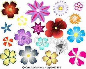 drawing different types of flowers   Art   Pinterest