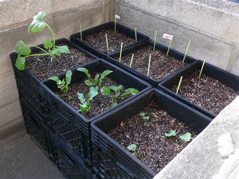 "Milk Crate ""airpot"" Urban Container Gardening 6 Steps"