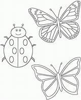 Colorare Coloring Ladybug Disegni Farfalle Coccinella Bambini Gratis Due Funeral Cliparts Disegno Library Clipart Clip Stampare Immagini Comments Etichette Segnaposto sketch template
