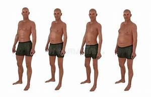 Male body shape diversity stock photo. Illustration of ...