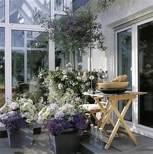 Balkonkästen Winterhart Bepflanzen : balkonkasten bepflanzen winterhart kreative ideen f r ~ Lizthompson.info Haus und Dekorationen