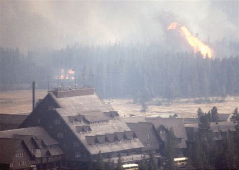 decision  suppress  fires  yellowstone