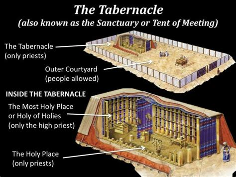90 best images about tabernacle on menorah