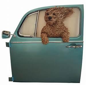 Dog door best images collections hd for gadget windows for Best dog door for winter