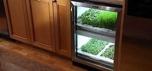 Kitchen Herb Garden Residential Urban Cultivator