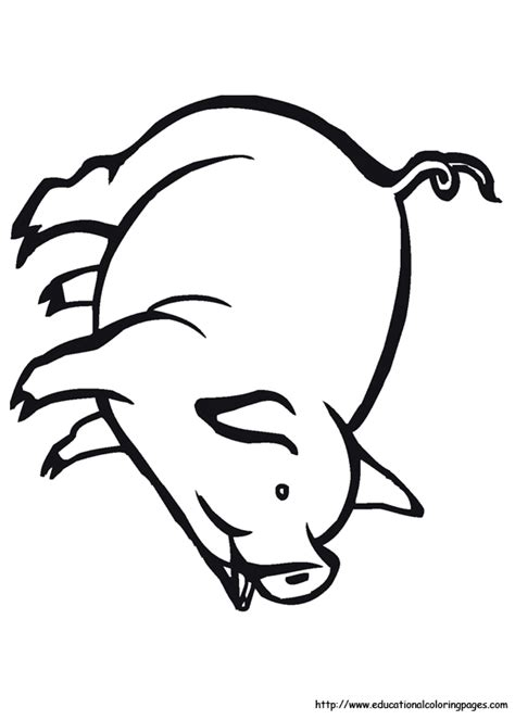 farm animal coloring pages   kids